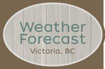 weather-forecast